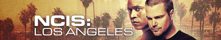 NCIS Los Angeles S10E18 REPACK iNTERNAL 480p x264-mSD