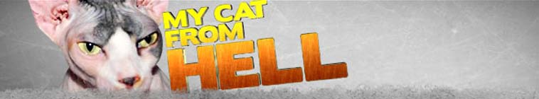 My Cat From Hell S03E04 Kitty Jail WEB H264-GIMINI