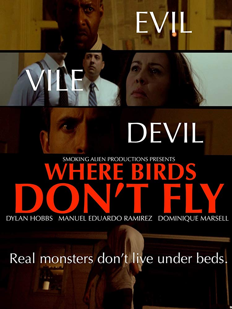 Where Birds Dont Fly (2017) HDRip 720p x264 - SHADOW[TGx]