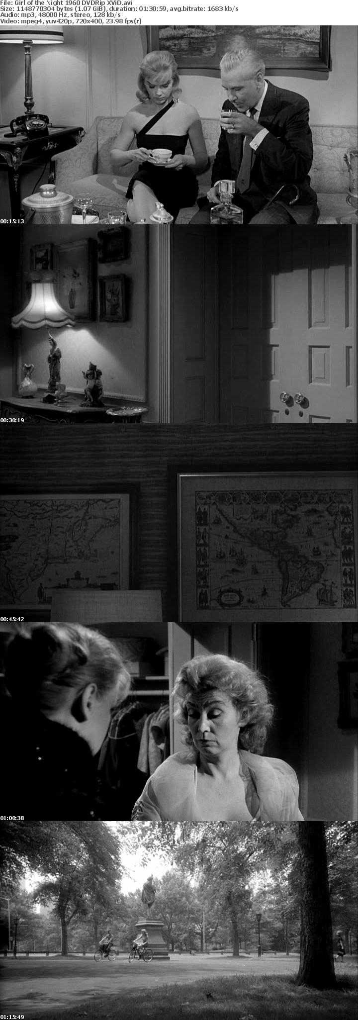 Girl of the Night 1960 DVDRip XViD