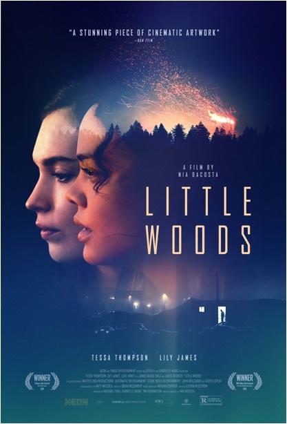 Little Woods 2018 HDRip AC3 x264-CMRG