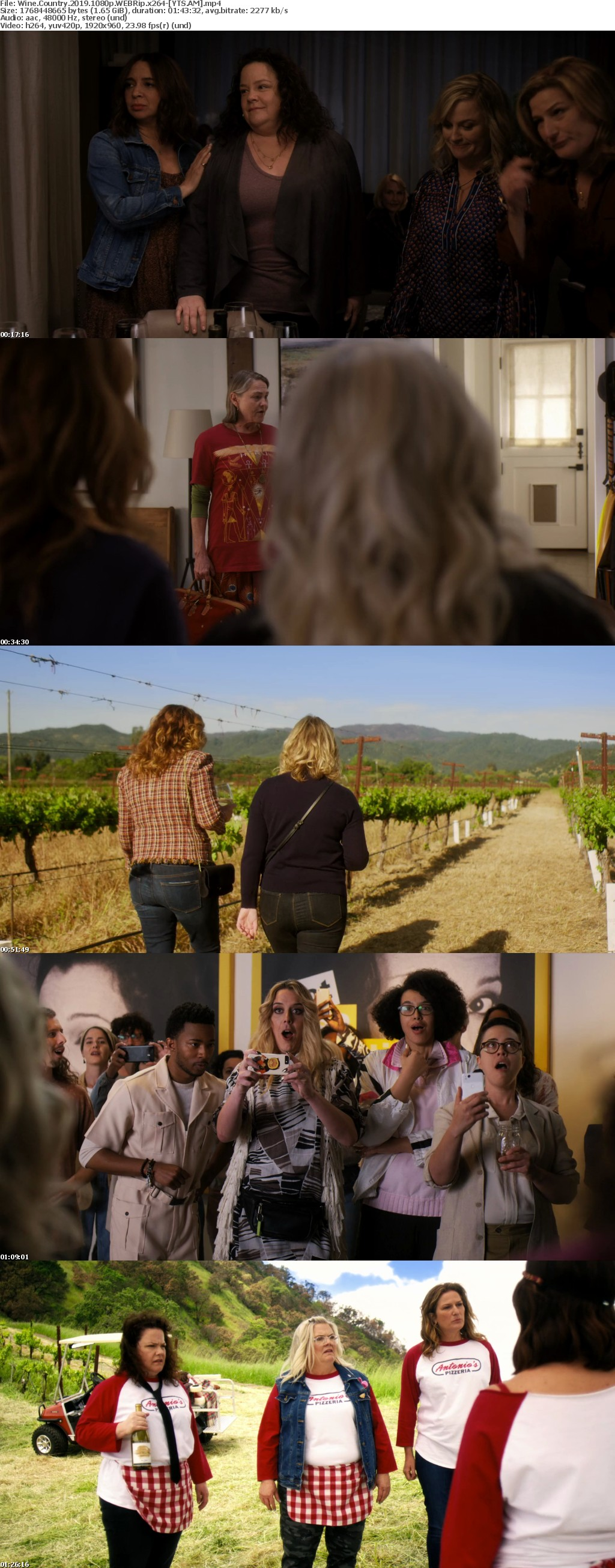 Wine Country 2019 [WEBRip] [1080p] YIFY