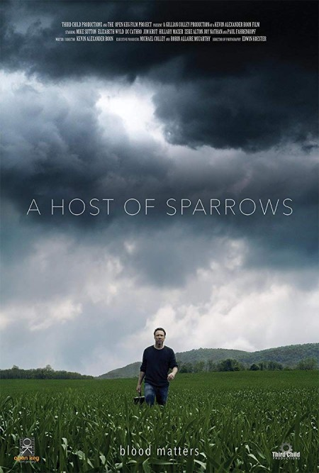 A Host of Sparrows 2018 HDRip AC3 X264-CMRG