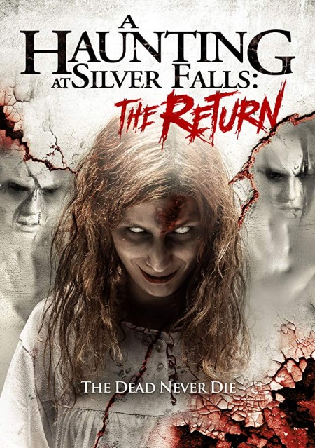 A Haunting At Silver Falls The Return (2019) WEB-DL XviD AC3-FGT