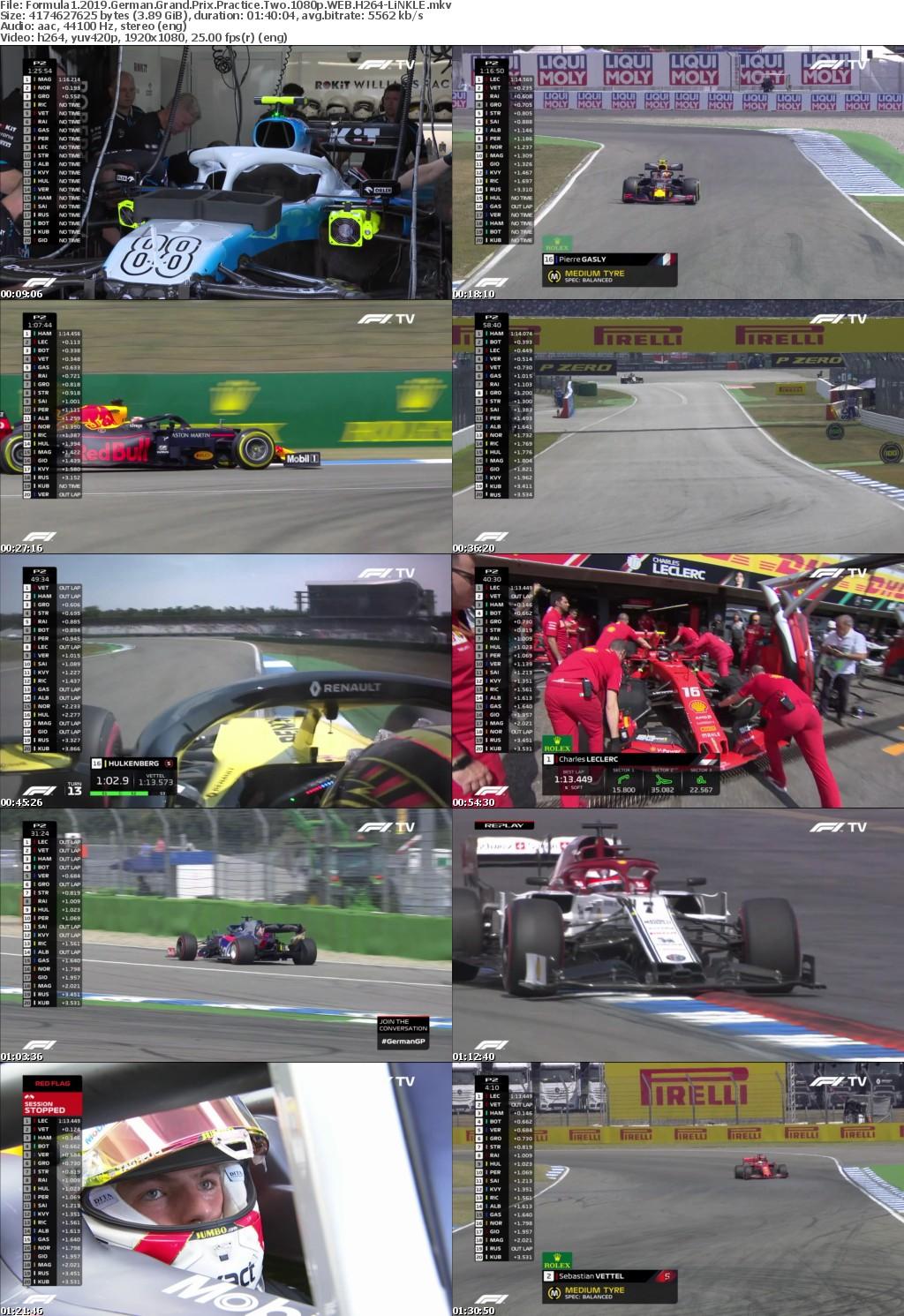 Formula1 2019 German Grand Prix Practice Two 1080p WEB H264-LiNKLE