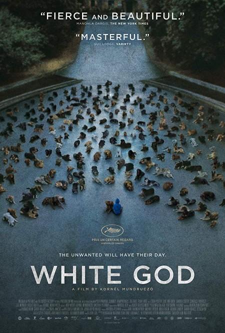 White God 2014 WEB AAC2 Egotistical
