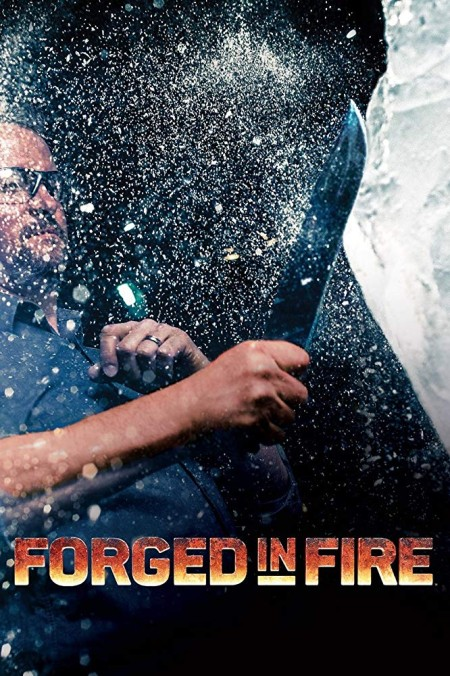 Forged in Fire S07E15 480p x264-mSD