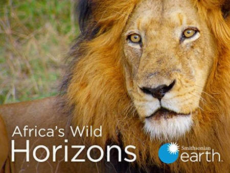 Africas Wild Side S01E03 Natures Greatest Architects 720p WEBRip x264-CAFFEiNE