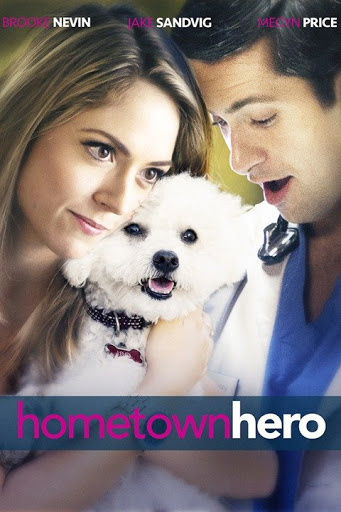Hometown Hero (2016) 720p WEBRip X264 Solar