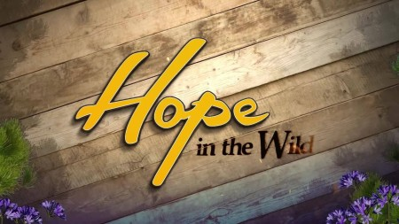 Hope in the Wild S02E18 Foxes and Lexus WEB x264-LiGATE