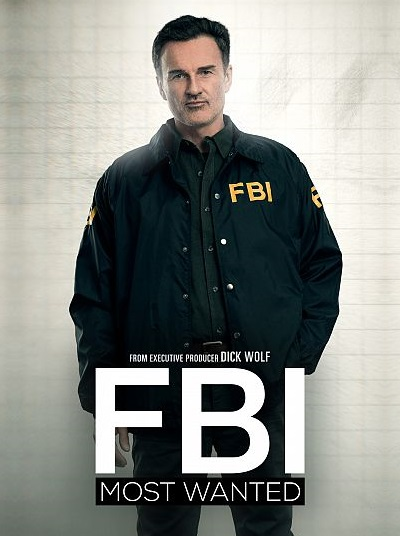 FBI Most Wanted S01E10 480p x264-mSD