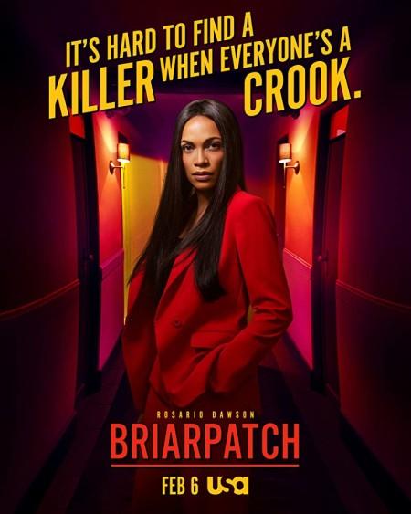 Briarpatch S01E09 REPACK WEBRip x264-XLF