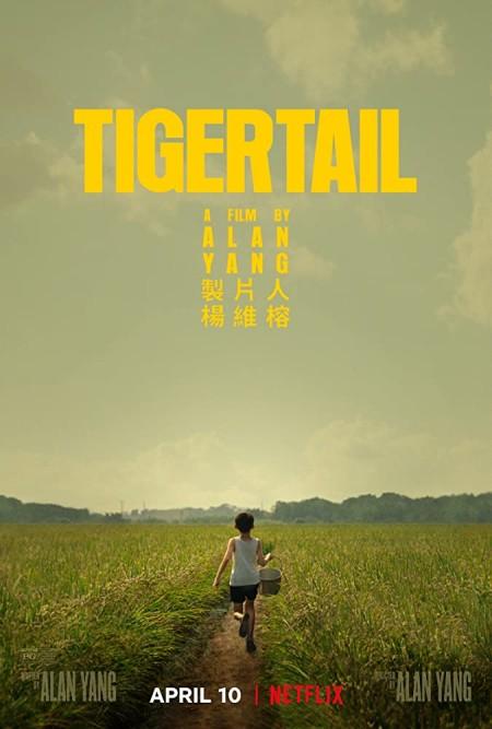 Tigertail (2020) 720p NF WEBRip 800MB x264-GalaxyRG