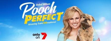 Pooch Perfect S01E07 HDTV x264-GIMINI