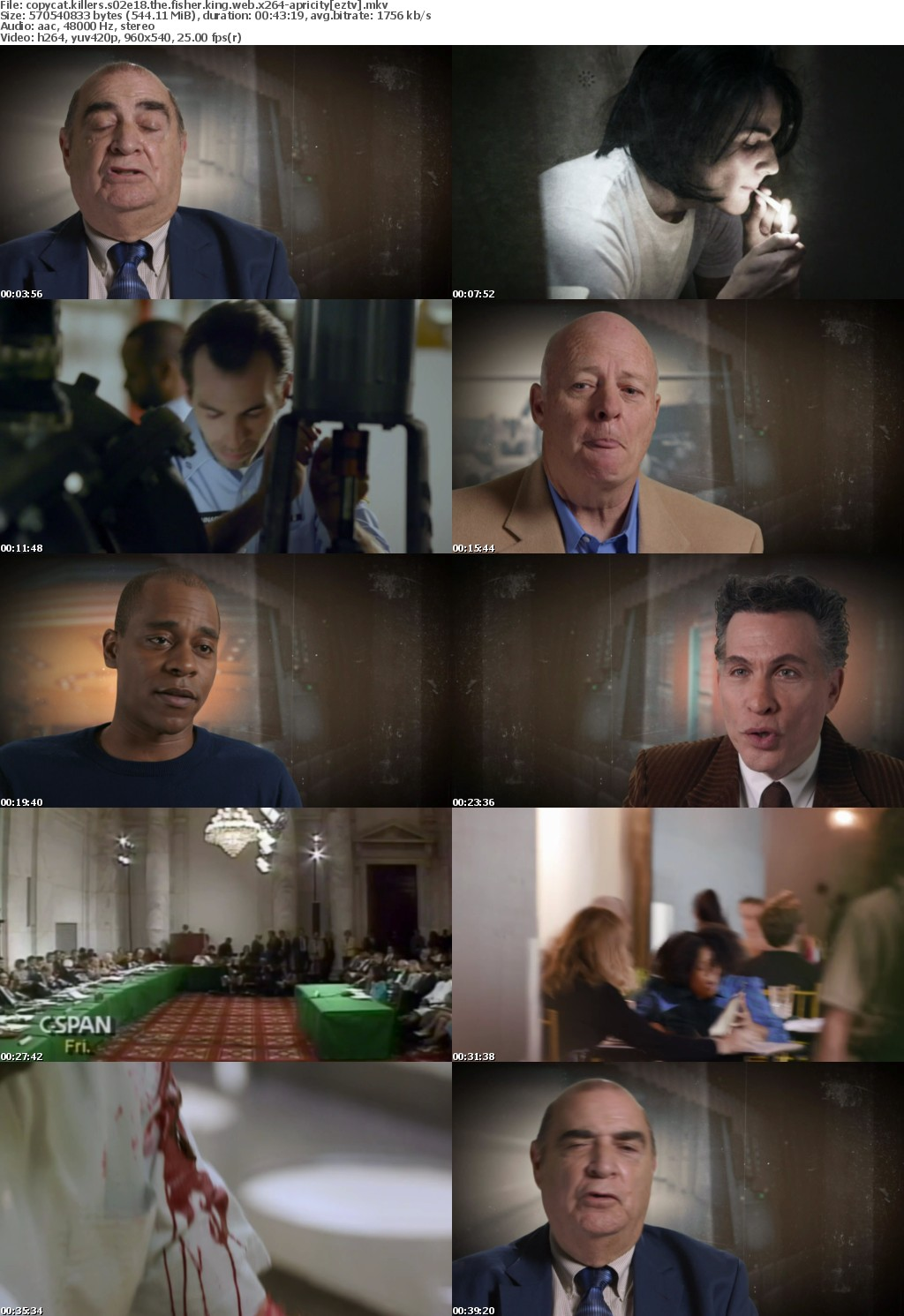 Copycat Killers S02E18 The Fisher King WEB x264-APRiCiTY