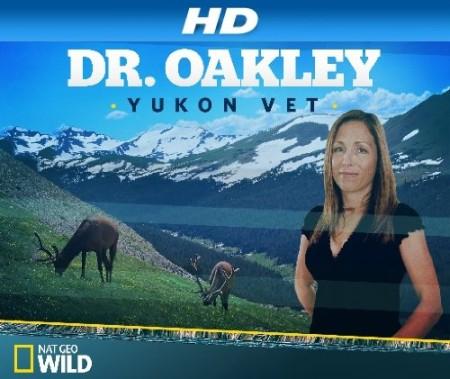 Dr Oakley Yukon Vet S08E05 Squawk Off 480p x264-mSD
