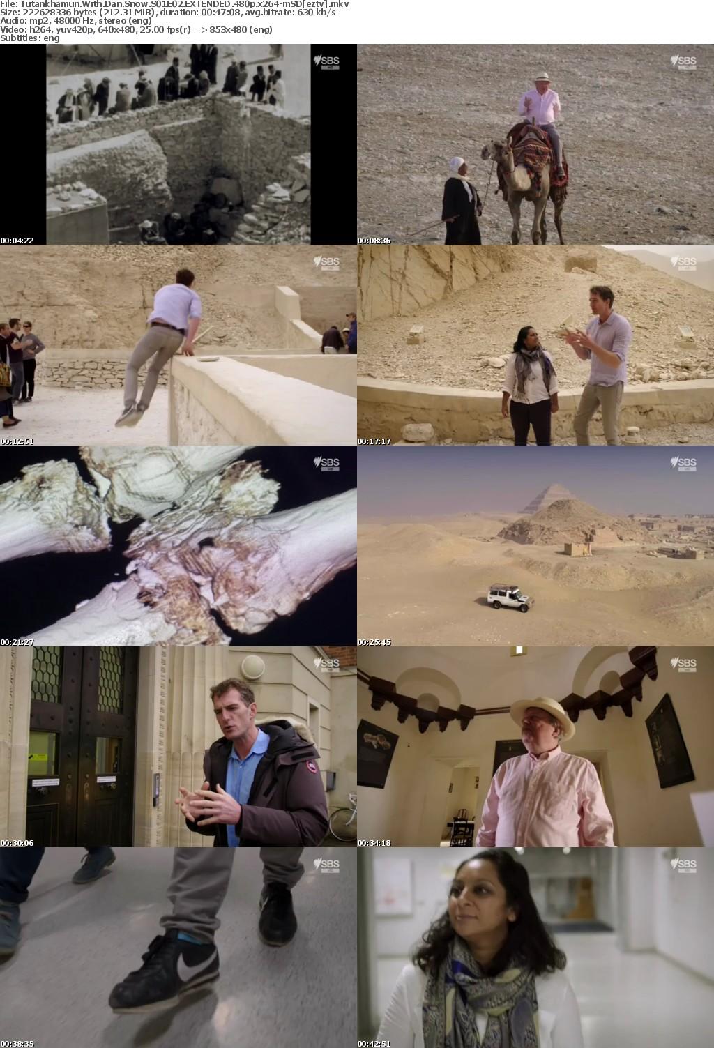 Tutankhamun With Dan Snow S01E02 EXTENDED 480p x264-mSD