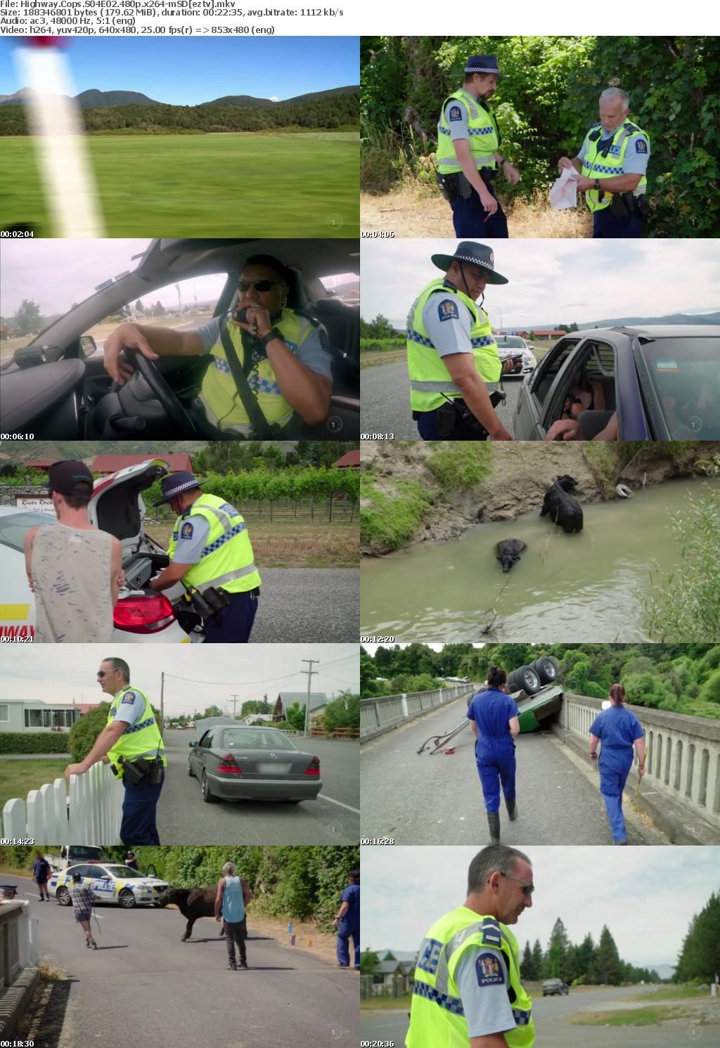 Highway Cops S04E02 480p x264-mSD
