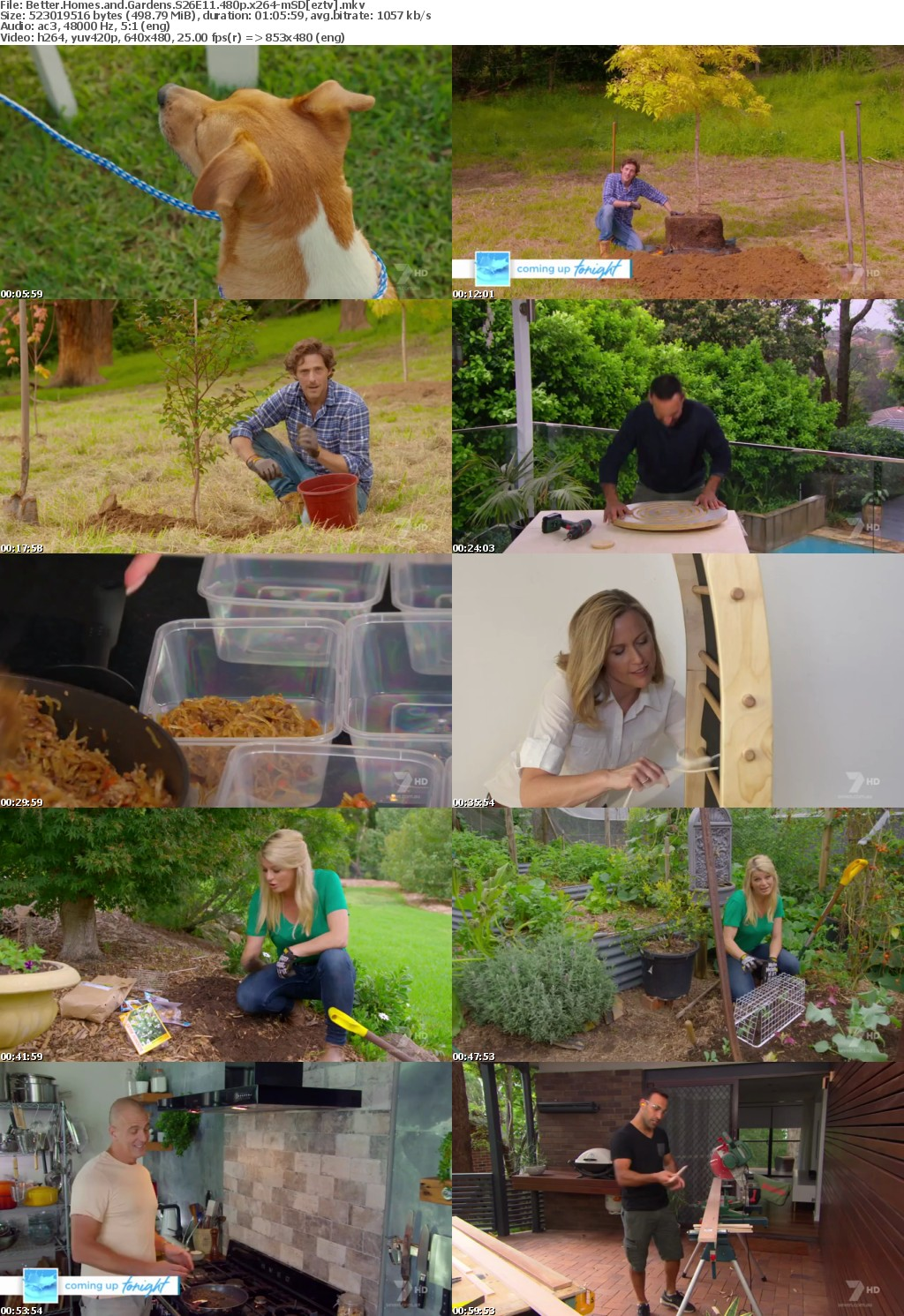 Better Homes and Gardens S26E11 480p x264-mSD