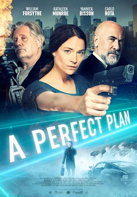 A Perfect Plan 2020 1080p WEB-DL H264 AC3-EVO