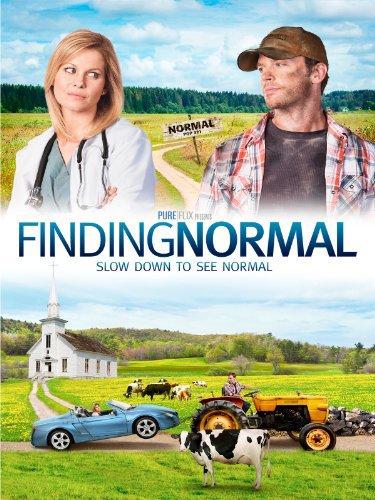 Finding Normal (2013) 720p WEBRip X264 Solar