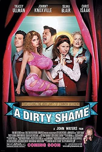 A Dirty Shame (2004) (DVD) mkv