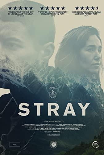 Stray 2018 [720p] [WEBRip] YIFY