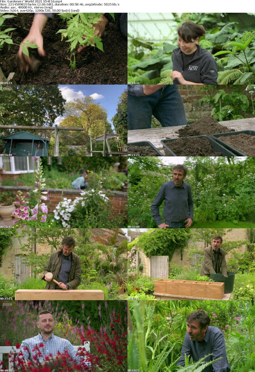 Gardeners World 2021 S54E16 (1280x720p HD, 50fps, soft Eng subs)