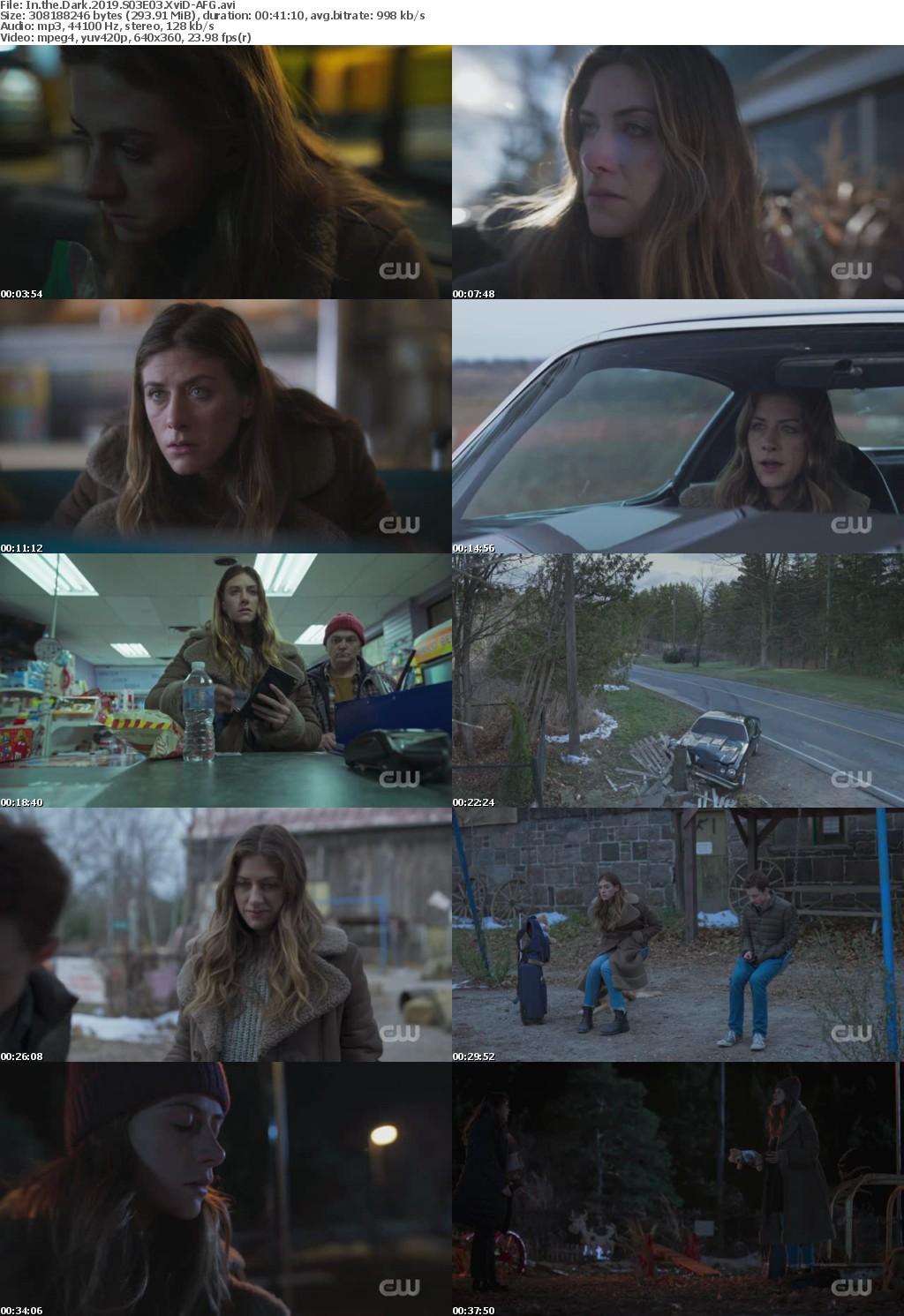 In the Dark 2019 S03E03 XviD-AFG