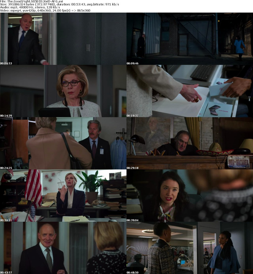 The Good Fight S05E03 XviD-AFG